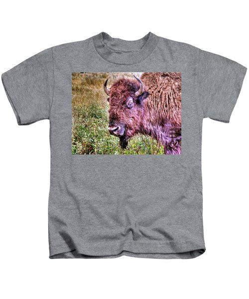 An Astonished Bison Kids T-Shirt