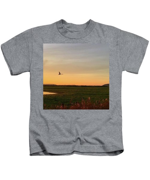 Another Iphone Shot Of The Swan Flying Kids T-Shirt