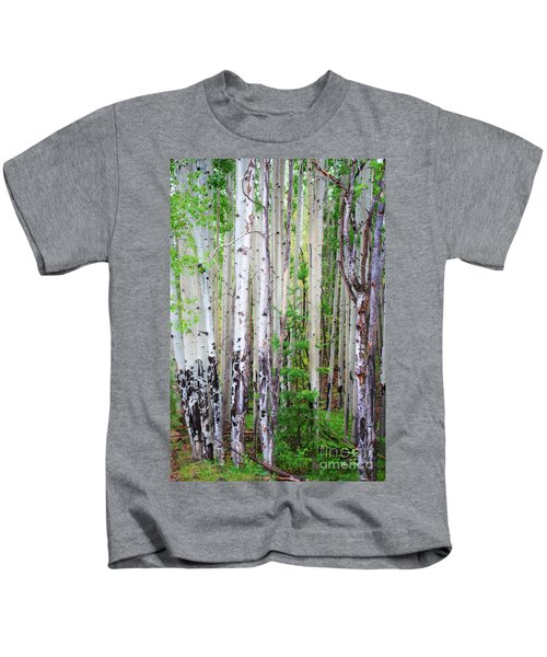 Aspen Grove In The White Mountains Kids T-Shirt