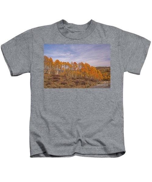 Aspens In Utah Kids T-Shirt