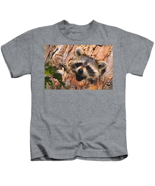 Kids T-Shirt featuring the photograph Baby Raccoon by William Jobes