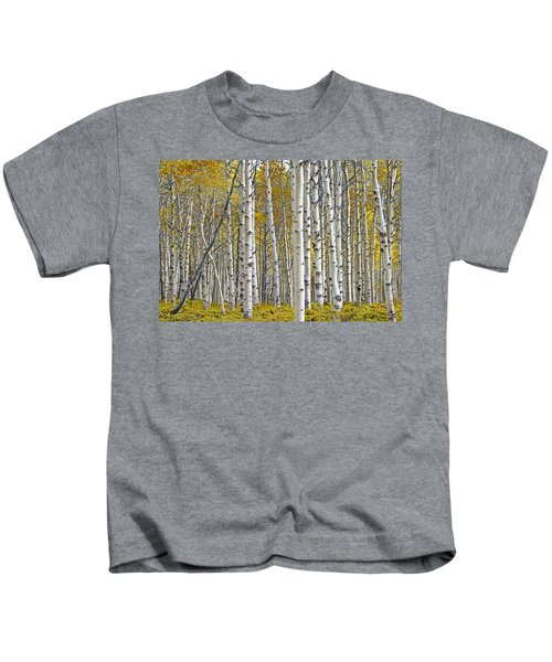 Birch Tree Grove With A Touch Of Yellow Color Kids T-Shirt