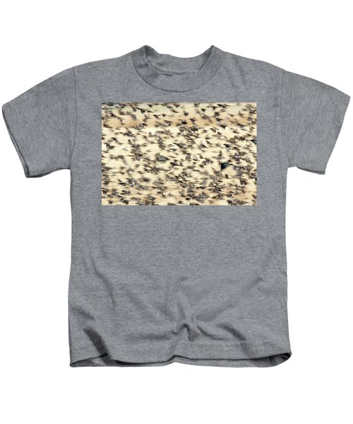 Bird Blizzard Kids T-Shirt