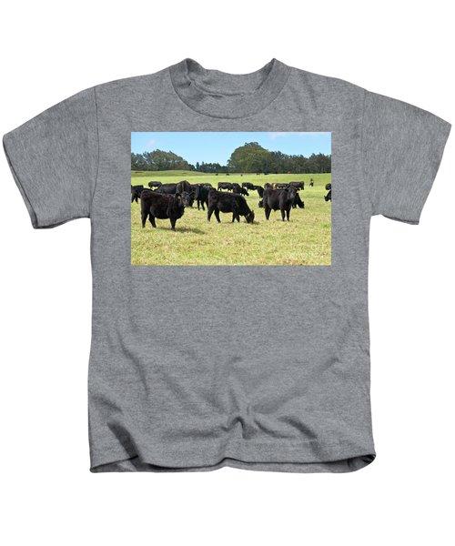 Black Angus Steers Kids T-Shirt