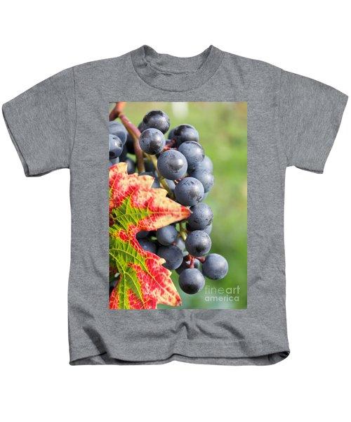 Black Grapes On The Vine Kids T-Shirt
