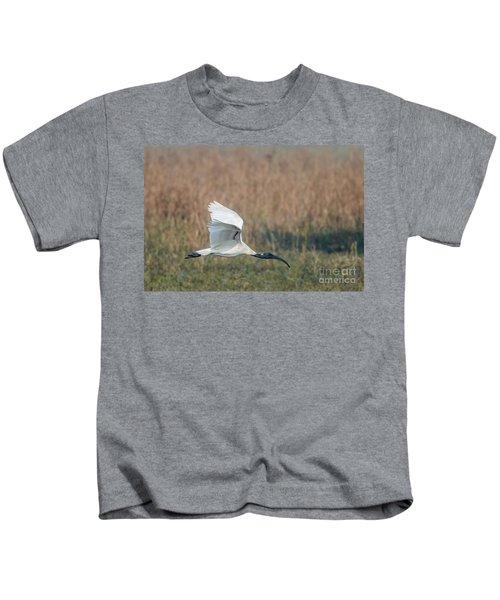 Black-headed Ibis 01 Kids T-Shirt