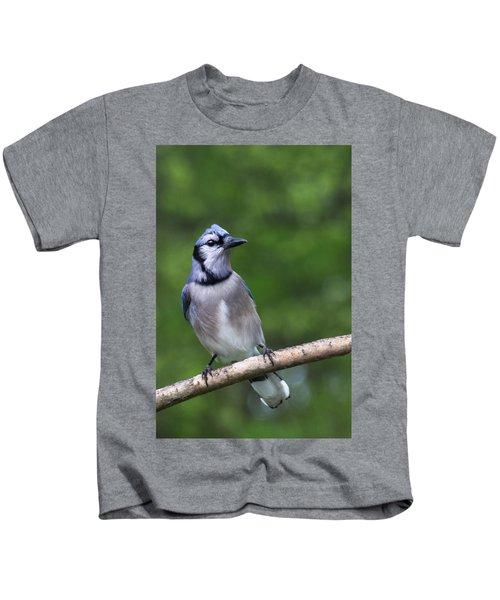 Blue Jay On Alert Kids T-Shirt