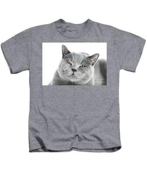 British Shorthair Cat Isolated On White. Angry, Irritated Kids T-Shirt
