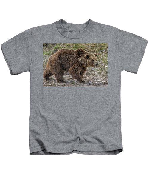 Brown Bear 6 Kids T-Shirt