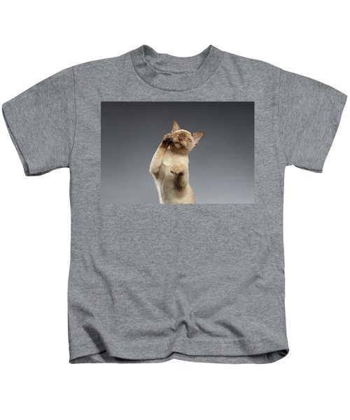 Burma Cat Paws Snout Covers On Gray Kids T-Shirt