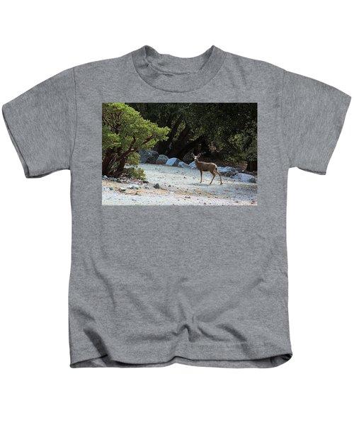 California Mule Deer Kids T-Shirt