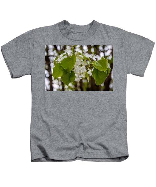 Callery Pear Tree Bloom Kids T-Shirt