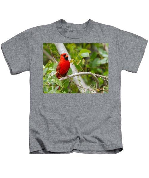Cardinal 147 Kids T-Shirt