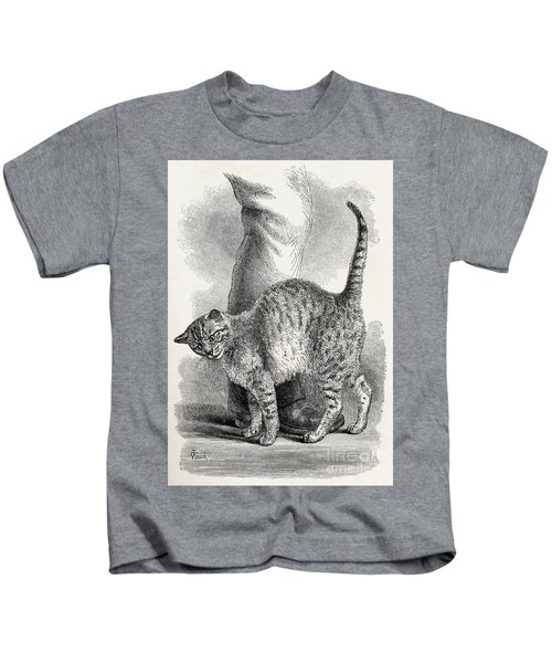 Cat In An Affectionate Frame Of Mind Kids T-Shirt