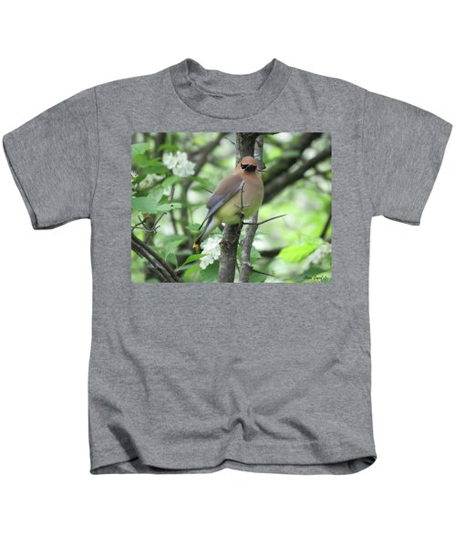 Cedar Wax Wing Kids T-Shirt by Alison Gimpel