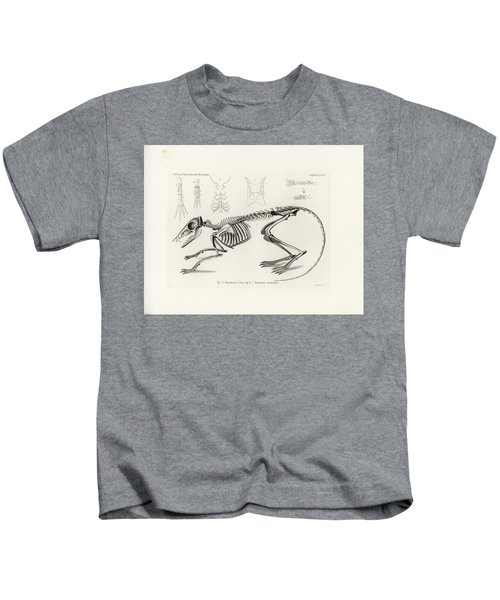 Checkered Elephant Shrew Skeleton Kids T-Shirt