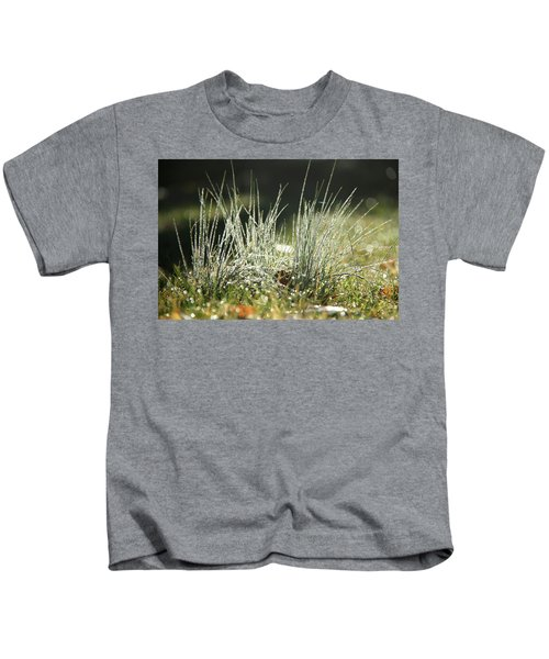 Close-up Of Dew On Grass, In A Sunny, Humid Autumn Morning Kids T-Shirt