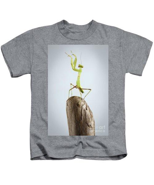 Closeup Green Praying Mantis On Stick Kids T-Shirt