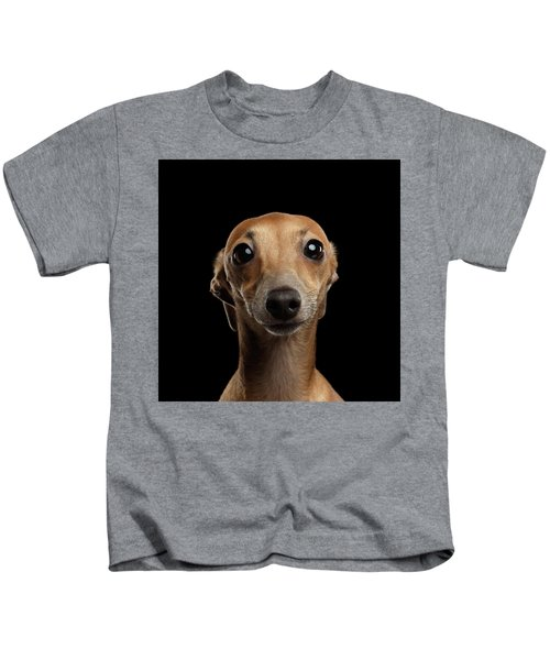 Closeup Portrait Italian Greyhound Dog Looking In Camera Isolated Black Kids T-Shirt