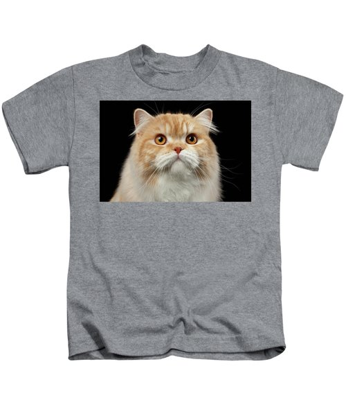 Closeup Portrait Of Red Big Persian Cat Angry Looking On Black Kids T-Shirt