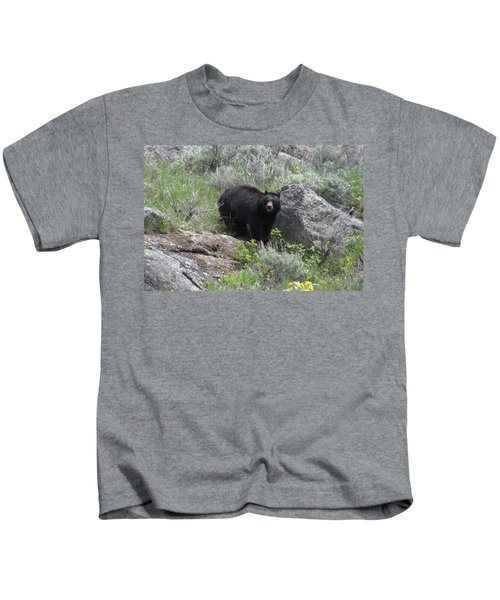 Curious Black Bear Kids T-Shirt