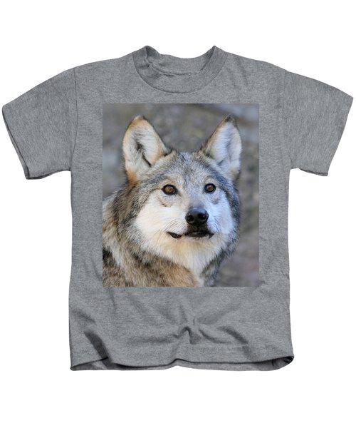 Curious Wolf Kids T-Shirt