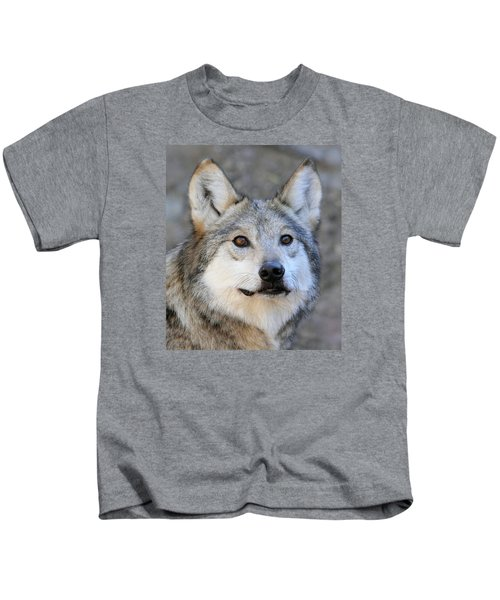 Curious Wolf Kids T-Shirt