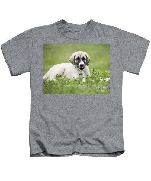 Anatolian Shepherd Puppy Kids T-Shirt