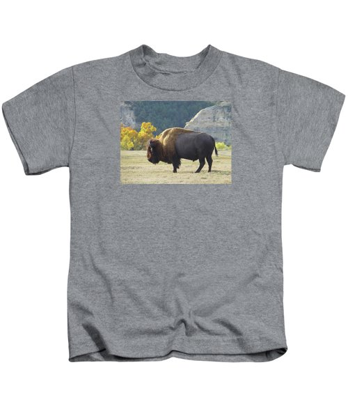 Dakota Badlands Majesty Kids T-Shirt