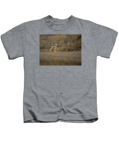 Denali Park Wolf Kids T-Shirt