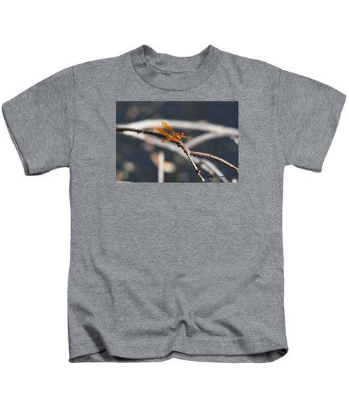 Eastern Amberwing Kids T-Shirt