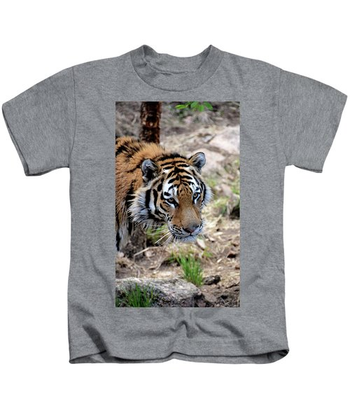 Feline Focus Kids T-Shirt