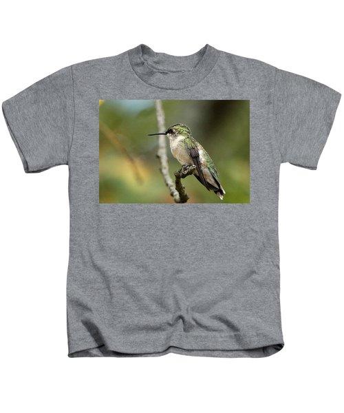 Female Ruby-throated Hummingbird On Branch Kids T-Shirt
