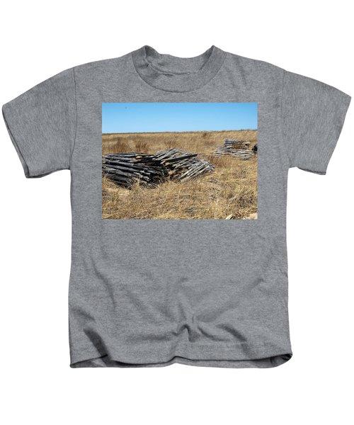 Fence Bails Kids T-Shirt