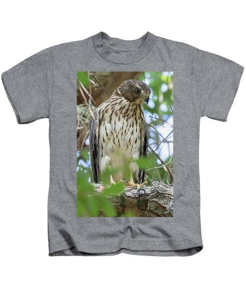 Fledgling Red-shouldered Hawk 2 Kids T-Shirt