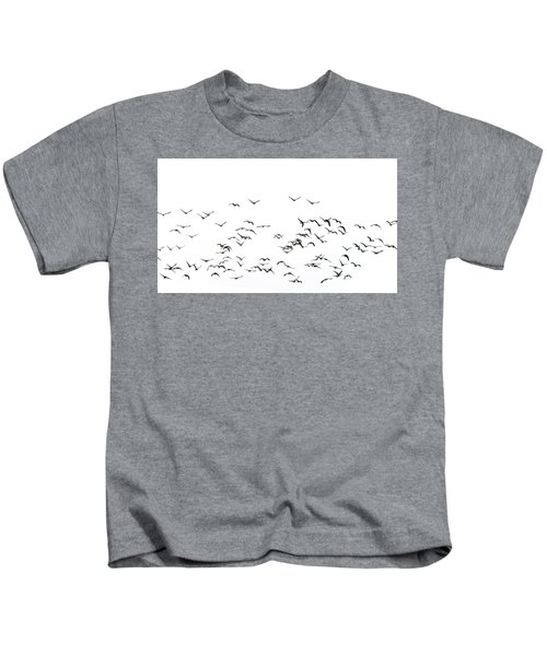 Flock Of Beautiful Migratory Lapwing Birds In Clear Winter Sky I Kids T-Shirt by Matthew Gibson