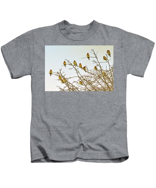 Flock Of Cedar Waxwings  Kids T-Shirt by Geraldine Scull
