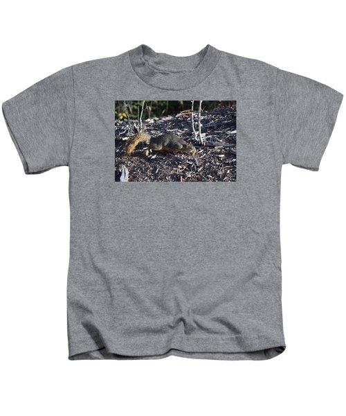 Squirrel Pprh Woodland Park Co Kids T-Shirt