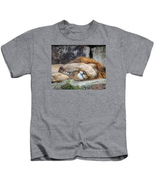 Fort Worth Zoo Sleepy Lion Kids T-Shirt