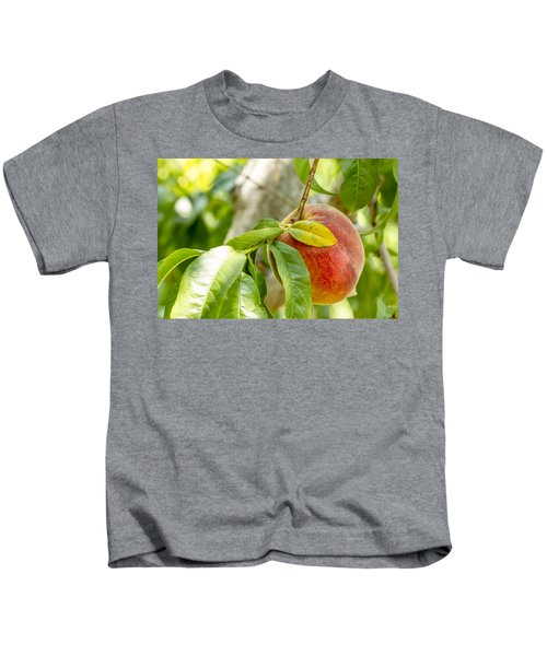 Fresh Peach Hanging In Orchard Kids T-Shirt