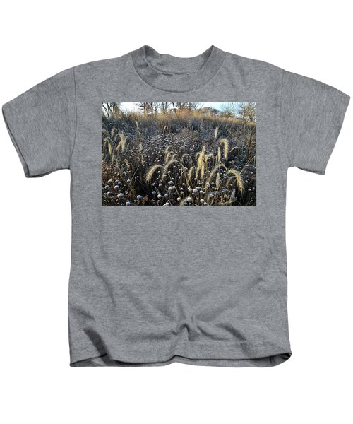 Frosted Foxtail Grasses In Glacial Park Kids T-Shirt