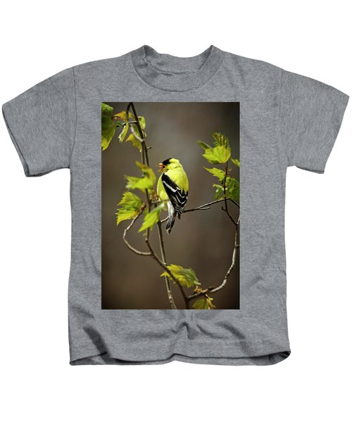 Goldfinch Suspended In Song Kids T-Shirt
