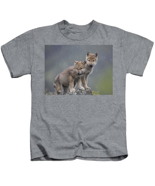 Gray Wolf Canis Lupus Pups In Light Kids T-Shirt