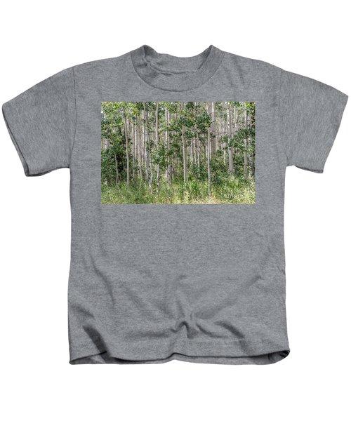 Grove Of Quaking Aspen Aka Quakies Kids T-Shirt