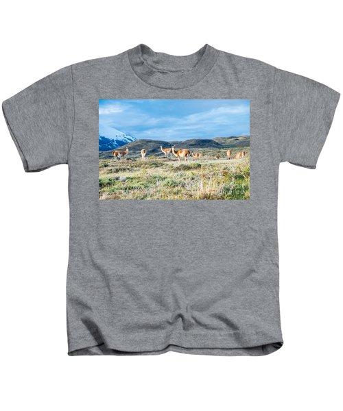 Guanaco In Patagonia Kids T-Shirt