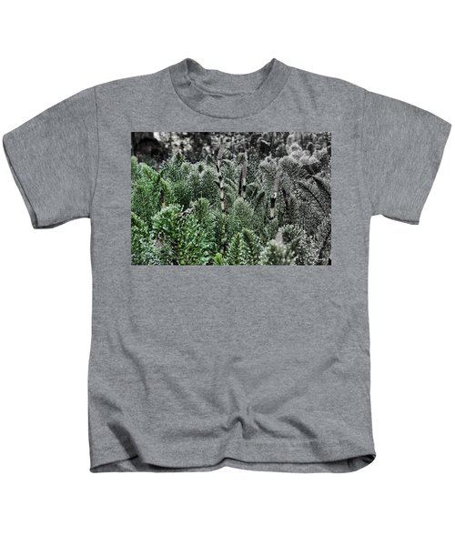 Horsetail Dewpoint Kids T-Shirt