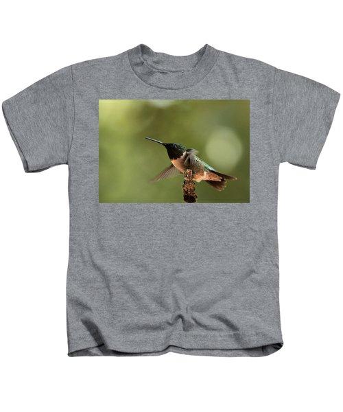 Hummingbird Take-off Kids T-Shirt