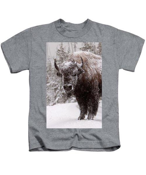 Ice Cold Winter Buffalo Kids T-Shirt