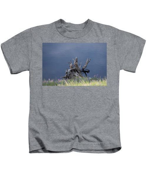 Stump Chambers Lake Hwy 14 Co Kids T-Shirt