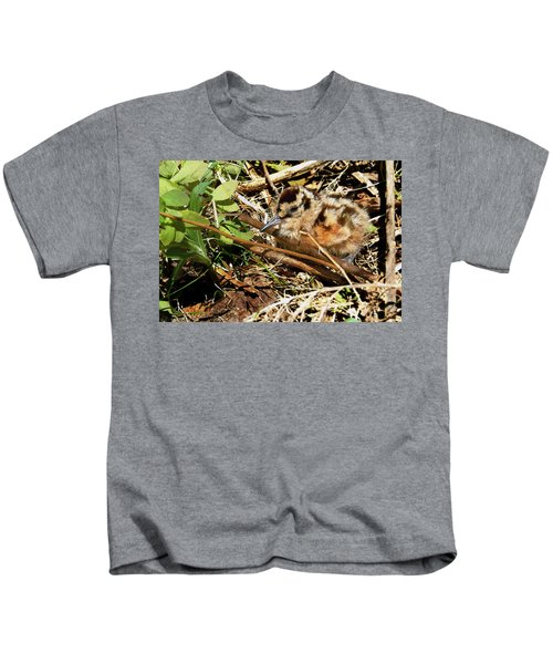 It's A Baby Woodcock Kids T-Shirt by Asbed Iskedjian